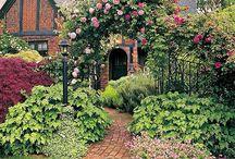My garden!