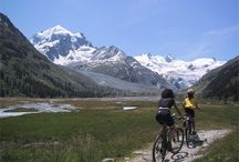 Mountain bike mania!