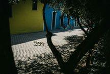 Contemporary Street Photography