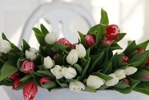 kvetinove aranze