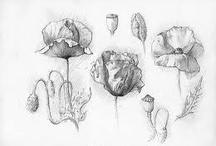 bloemen aquarel/acryl