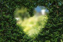Paarglück - Eheberatung und Paartherapie Darmstadt