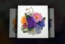 Sarah's Flowers Video's