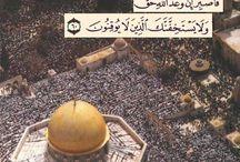 Platser att besöka فلسطين