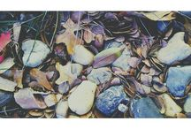MY ROCK OBSESSION / by Ebony Holloman
