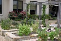 Westfield House Garden