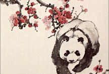 Panda love ❤️