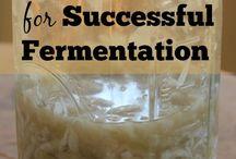 Fermentation Tips