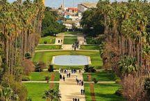 الجزائر Algeria