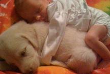 adorable! / by Nancy Greer