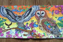 Animorphia / Coloring book
