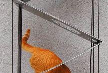 Ideeën voor katten