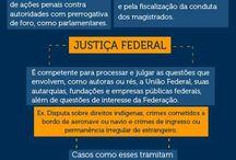 Judiciário e Justiça Federal