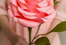 Roses papier