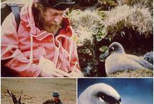 Australian Nature Photos