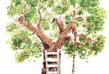 stamboom boom