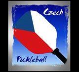 Pickleball / Pickleball sport