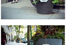 Urbanmind+pot