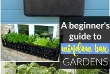 Wonderful Window Box Gardens / Don't have the outside space for a garden? Then a window box garden could be the answer!