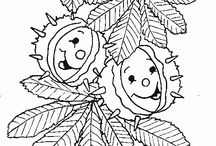 őszi szinezők
