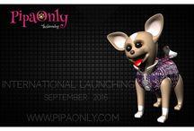 Fashion Dog / www.pipaonly.com/en
