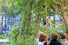 School garden / by Marlize Pretorius