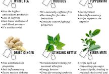 The Health Benefits of Tea / Herbal Teas
