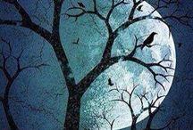 Moons / by Sarah Kagrise