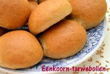 Einkorn Wheat - XBB