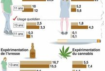 Infographie / by Damien Perrot
