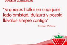Frases Cilek / Frases bonitas