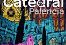 CATEDRAL DE PALENCIA  / Todas mis fotos de la Catedral mas bella y desconocida...