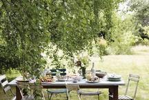 dining outdoors / by Aran Goyoaga