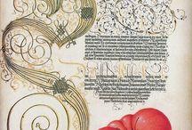 Calligraphie et botanique