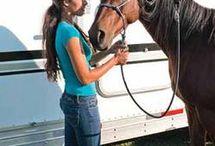 Horse ideas