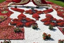 Kunst mit Blüten