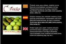 Fruilar SAT 197 / Cooperativa de Fruita de Lleida