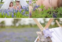 Bluebonnet Photos / by Sierra Jendrzey Ibrom