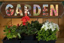 Gardening / by Dinah Hemric