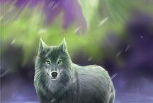 Vlci a obrazy
