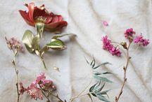 Natura | Kwiaty | Flower power