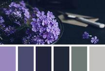 Art-Colour Setting