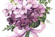 kytky inspirace