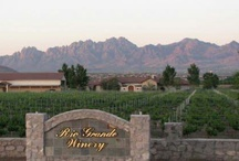 New Mexico Vineyards & Wineries / Vineyards & Wineries of New Mexico