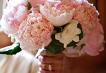 Wedding Ideas / by Lesley Norrie-Lavictoire