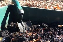 Worm Composting Supplies / Essential worm composting supplies and tools