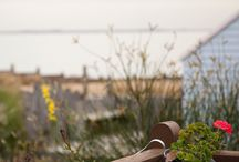 Places to Stay in Whitstable / A selection of properties to meet all needs and requirements.