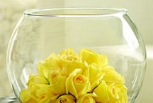 yellow bowl of roses