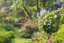 My new cottage garden / My third garden is a cottage garden. Located in the rural northern side of the island Sealand in Denmark