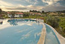 Yedi Bilgeler boutique hotel / Hotel, pool and vinyards
